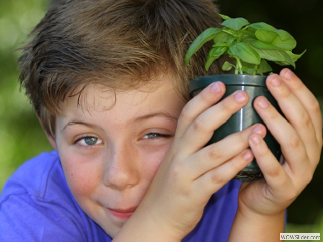 04-boy_and_plant