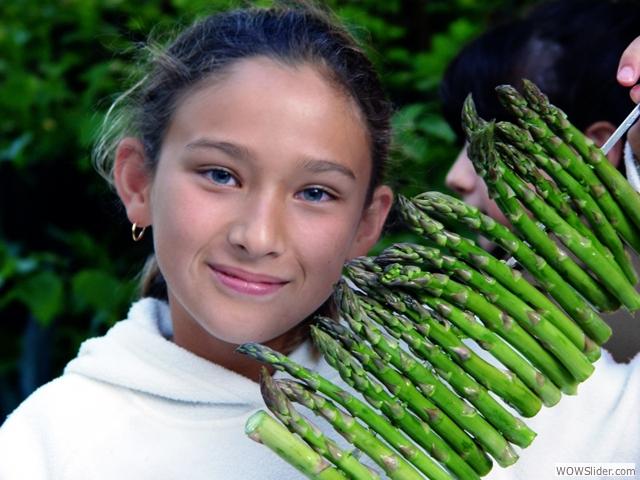 05-asparagus