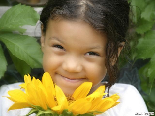 14-sunnyflower