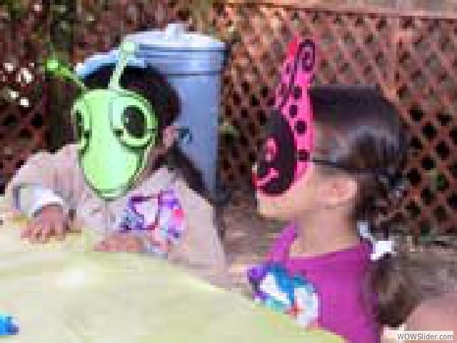 Garden_bugs
