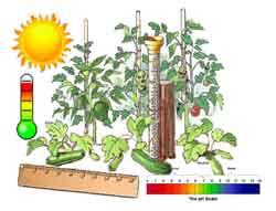 gardenscience