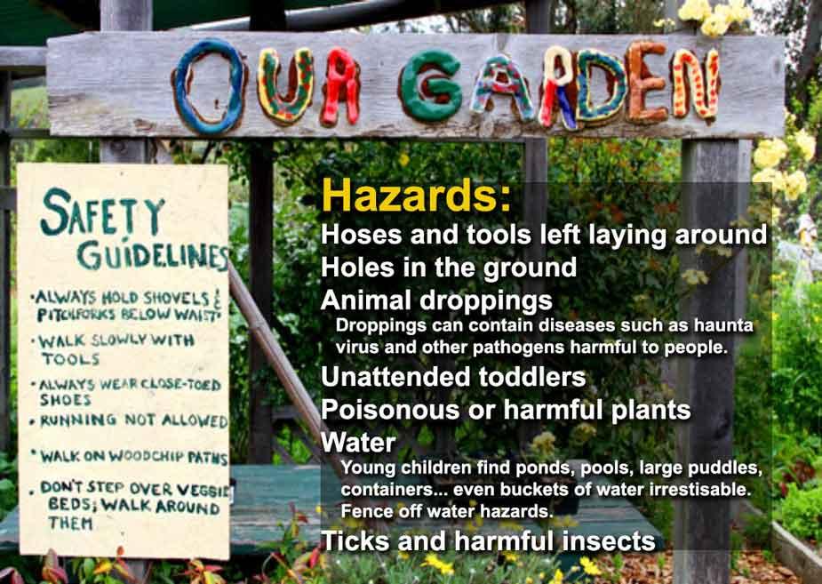 Garden Hazards Kids Growing Strong