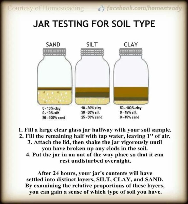 This idea from Homesteading explains how to use a jar of soil and water to determine what type of soil you have. Image courtesy of found at theHomesteading website at https://www.facebook.com/homesteady