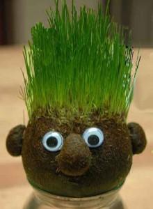 grass-buddy400