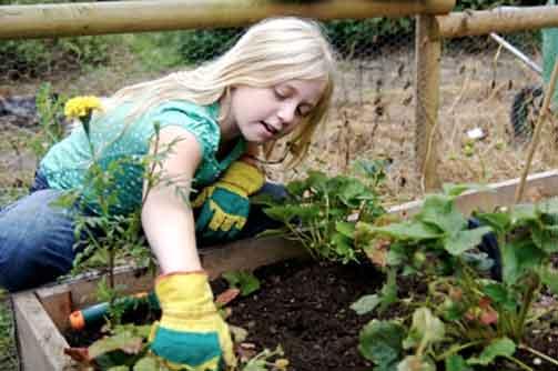 Kids-Gardening503